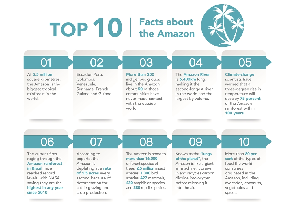 Top 10 Facts about The Amazon